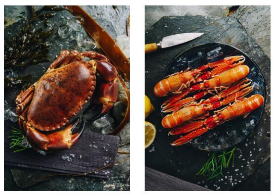 海鲜餐饮行业恢复迅速